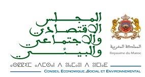 Le Conseil Economique Social et Environnemental